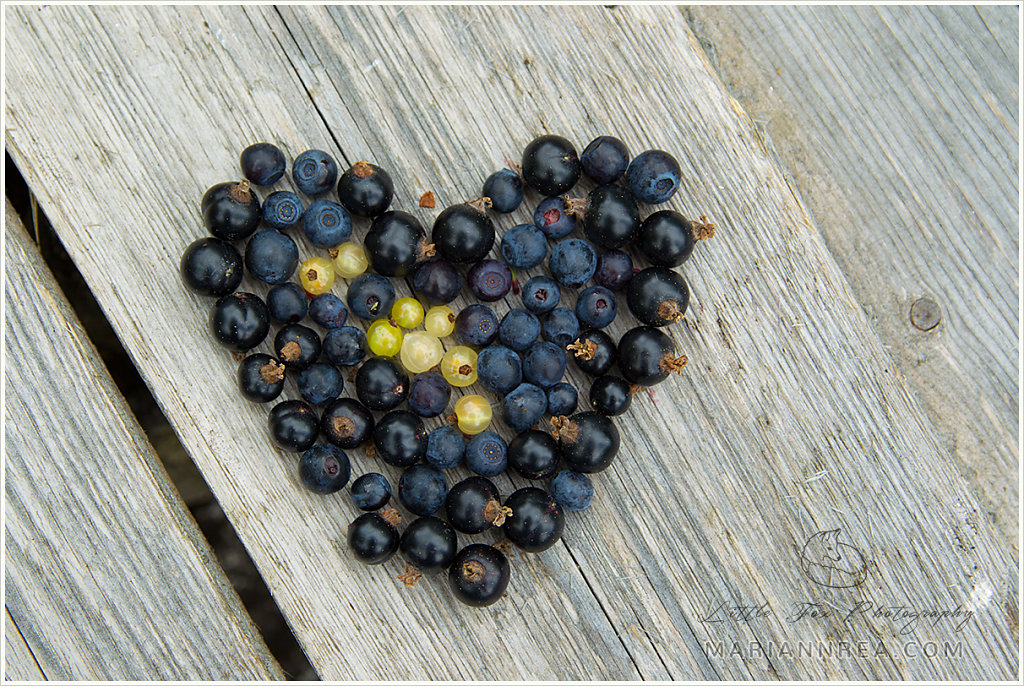 Blueberry blackcurrant heart