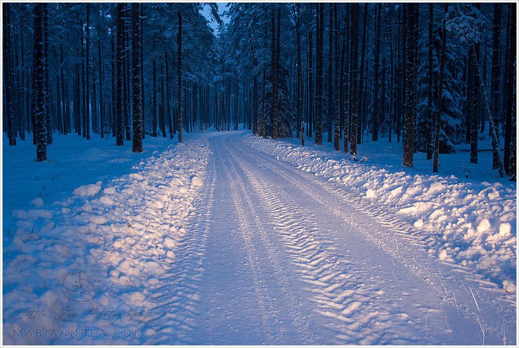 Lumine tee koju